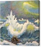 Sculpting Tide Canvas Print
