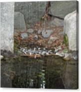 Sculpture Garden II Canvas Print