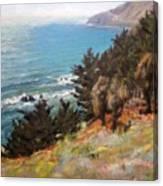 Sea And Pines Near Ragged Point, California Canvas Print