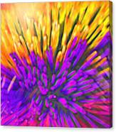 Sea Anemone Abstract - Kooosh Ball Canvas Print