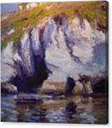 Sea Cliffs In Afternoon Light Canvas Print