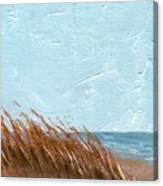 Sea Grass On Tybee Island Canvas Print
