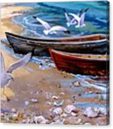 Sea Gull Cove Canvas Print