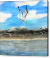 Sea Gulls Canvas Print