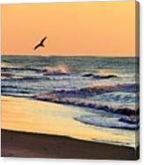 Sea It To Believe It Canvas Print