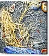 Sea Life Art By Sharon Cummings Canvas Print