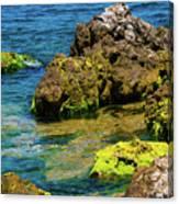 Sea Of Marmara Seashore Canvas Print