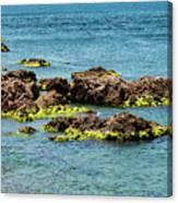 Sea Of Marmara Seaside Canvas Print