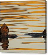 Sea Otter Laying Low In The Water Canvas Print