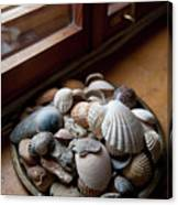 Sea Shells And Stones On Windowsill Canvas Print