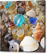 Sea Shells Art Prints Blue Seaglass Sea Glass Coastal Canvas Print