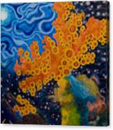 Sea Sponges Canvas Print
