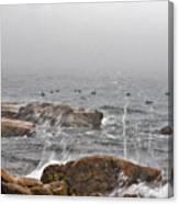 Sea Spray In Fog Canvas Print