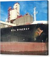 Sea Synergy Hull Canvas Print