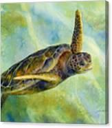 Sea Turtle 2 Canvas Print