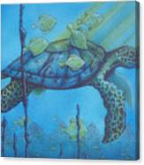 Sea Turtle And Fish Canvas Print