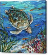 Sea Turtle Dive Canvas Print