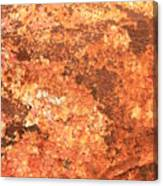 Sea Weathered- Abstract Art Canvas Print