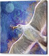 Seagull Against Blue Abstract Canvas Print