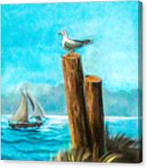 Seagull At Port Entrance Canvas Print