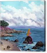 Seagull Cove Canvas Print