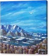 Seagull Seascape V Canvas Print