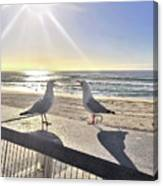 Seagull Sonnet  Canvas Print