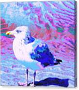 Cool And Colorful Gull Canvas Print