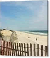 Seagulls Beach Canvas Print