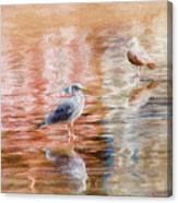Seagulls - Impressions Canvas Print