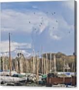 Seagulls Over Mylor Creek Boatyard Canvas Print