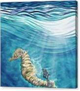Seahorse Blues Canvas Print