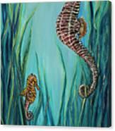 Seahorse Refuge Canvas Print
