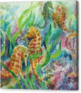 Seahorses Three Canvas Print