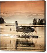 Seair Beaver 1 Canvas Print