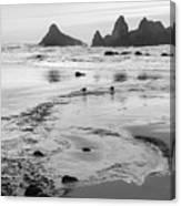 Seal Rock 0169 Canvas Print