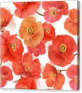 Seamless   Pattern Of Watercolor Poppy Flowers Canvas Print
