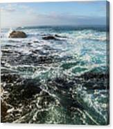 Seas Of The Wild West Coast Of Tasmania Canvas Print