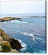 Seascape From Point Lobos State Reserve Near Monterey-california  Canvas Print