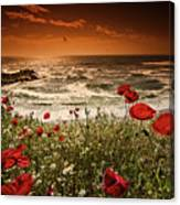 Seascape With Poppies Canvas Print