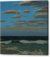Seascape With Tearns Canvas Print