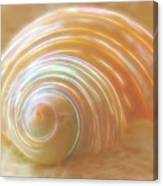 Seashell Sandy Fantasy Canvas Print