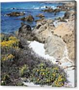 Seaside Flowers And Rocky Shore Canvas Print