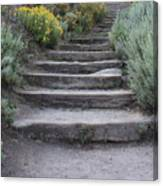 Seaside Steps Canvas Print