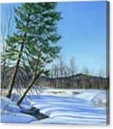 Season Of Shadows Canvas Print