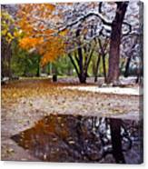Seasons Changing Canvas Print