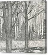 Seasons End Canvas Print