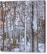 Season's First Snow Canvas Print