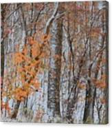 Seasons Overlapping Canvas Print