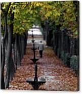 Seasons - Pathway Canvas Print